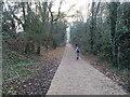 SO8798 : Path Scene by Gordon Griffiths