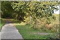 TQ5815 : Footpath crossing The Cuckoo Trail by N Chadwick