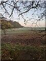 TF0821 : Uphill by Bob Harvey