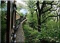 SH6440 : On the Ffestiniog Railway by Jeff Buck