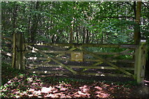 TQ4048 : Entrance to Great Earls Wood by N Chadwick
