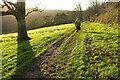 SX8754 : Three trails in one near Greenway by Derek Harper