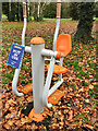 TA0429 : Outdoor gym, out of use, Hull by Paul Harrop