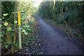 SP5087 : Disused railway at Ullesthorpe by Stephen McKay