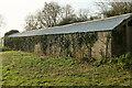 SX8458 : Bat roost, Hoyle Copse by Derek Harper