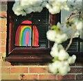 TQ0251 : Merrow - Rainbow Window Dressing by Colin Smith