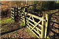 SX7390 : Gates on the Two Moors Way by Derek Harper