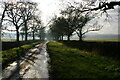 SP7075 : Lane from Haselbech towards Cottesbrooke by Christopher Hilton