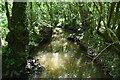 TQ6427 : Tide Brook by N Chadwick
