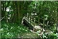 TQ6128 : Footbridge over the Tide Brook by N Chadwick