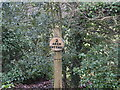 TG2825 : Sign for Arch Cottage by David Pashley