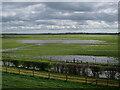 TL4683 : Wet grassland on Byall Fen by Hugh Venables