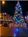 SD7807 : Town Centre Tree by David Dixon