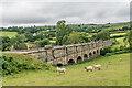 SO6074 : Cornbrook Dingle Crossing by Ian Capper