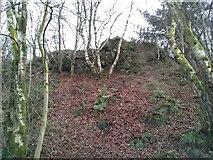 NS5574 : Rocky outcrop, Lennox Park by Richard Sutcliffe