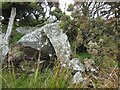 SX1573 : Old Boundary Marker on the boundary of Blacktor Downs by P G Moore