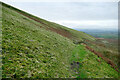 NY6731 : Bridleway into Littledale by Andy Waddington