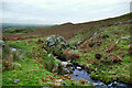 NY6631 : Littledale Beck jigs sideways as it crosses a fault by Andy Waddington