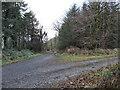 S3928 : Track Junction by kevin higgins