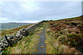 SD8786 : Bridleway on Wether Fell by Andy Waddington
