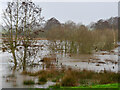 TG3129 : Flooded Water Meadows by David Pashley