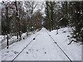 SE1338 : Shipley Glen Tramway by habiloid