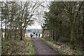 NZ1738 : Horses and people on Deerness Valley Railway Walk by Trevor Littlewood