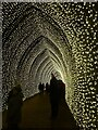 SP4315 : Blenheim Illuminations - (15) - Inside the golden tunnel by Rob Farrow