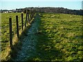 NS5473 : Fence line by Richard Sutcliffe