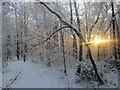 NS7555 : Morning sun and snow in the Dalzell Estate by Alan O'Dowd