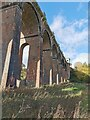 TQ3227 : Ouse Valley Viaduct by PAUL FARMER