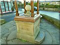 SE1646 : The Fountain of Life, Main Street, Burley-in-Wharfedale - detail by Stephen Craven