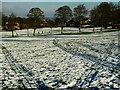 SE2335 : Sledge trails in Bramley Park by Stephen Craven
