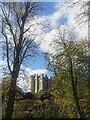 TQ0107 : Arundel Castle by PAUL FARMER