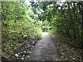 SJ8848 : Woodland path in Central Forest Park, Hanley by Jonathan Hutchins
