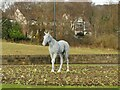 SE2337 : The white horse of Horsforth (1) by Stephen Craven