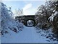 NZ1049 : Bridge over the railway walk by Robert Graham