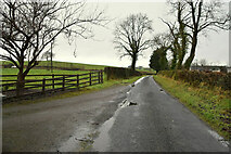 H4967 : Cranmore Road, Ranelly by Kenneth  Allen