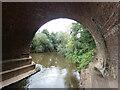 SO7361 : Under Ham Bridge by Mat Fascione