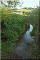 SX8659 : Yalberton Stream by Derek Harper