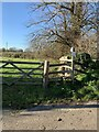 ST7820 : Footpaths off Old Mill Lane, Marnhull by Jonathan Hutchins