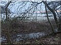 TF0820 : Normally hidden by Bob Harvey