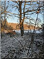 TF0820 : Sunshine and snow by Bob Harvey