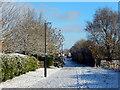 SP4773 : Path on Cawston Grange Estate by Stephen McKay
