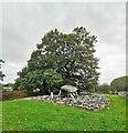 SH5822 : Dyffryn Ardudwy Burial Chamber by PAUL FARMER