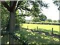 ST8426 : Field adjacent to the Coppleridge Inn, Motcombe by Jonathan Hutchins