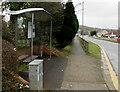 ST3091 : JCDecaux name on a Malpas Road bus shelter, Newport by Jaggery