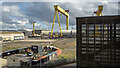 J3575 : Cranes, Belfast by Rossographer