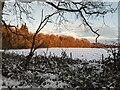 TF0820 : Woodland's edge by Bob Harvey