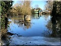 TF3902 : Flood water at Rings End sluice - The Nene Washes by Richard Humphrey